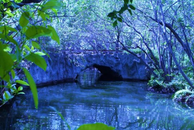 arch creek 3